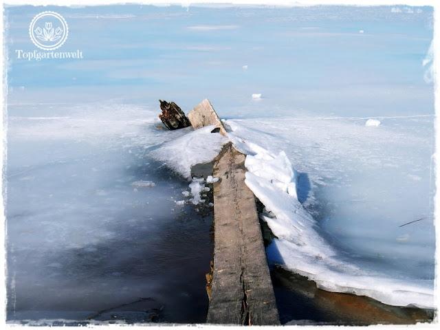 Gartenblog Topfgartenwelt Wallersee: die Macht des Eises - kaputter Wellenbrecher