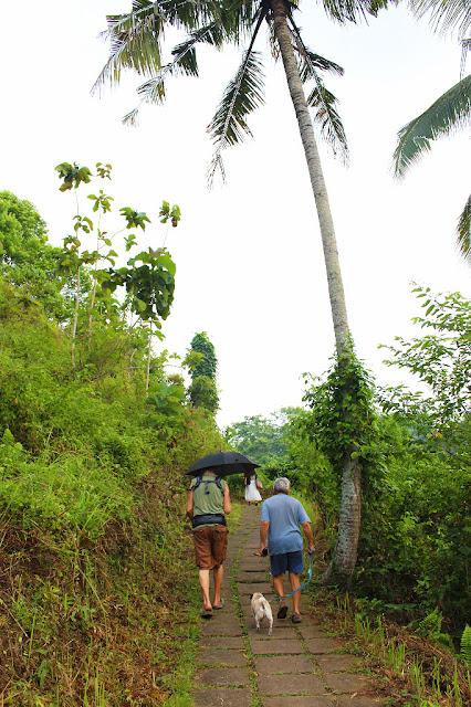 ubud jogging track