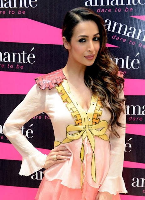 Malaika Arora Khan Wears Gucci Dress for Amanté Store Launch in Delhi