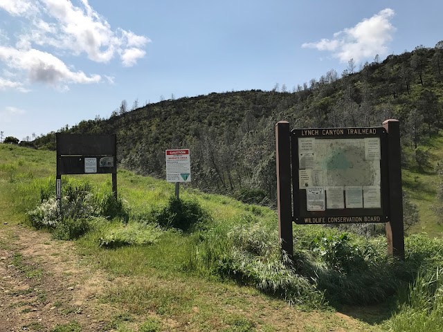 Lynch Canyon trailhead