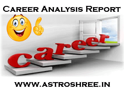 career report by astrologer astroshree.in