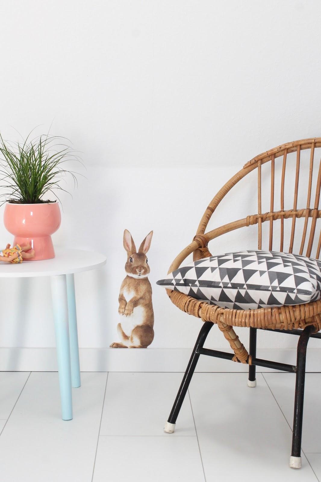 Wo sich Fuchs und Hase gute Nacht sagen…mit Flinders