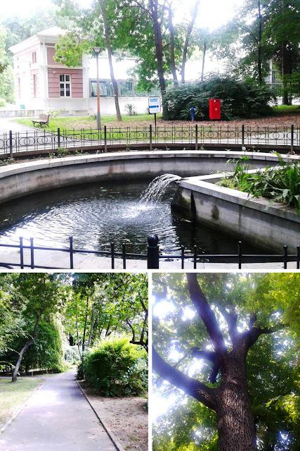 Zelenilo Bašte i fontana