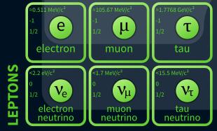 Leptons-image
