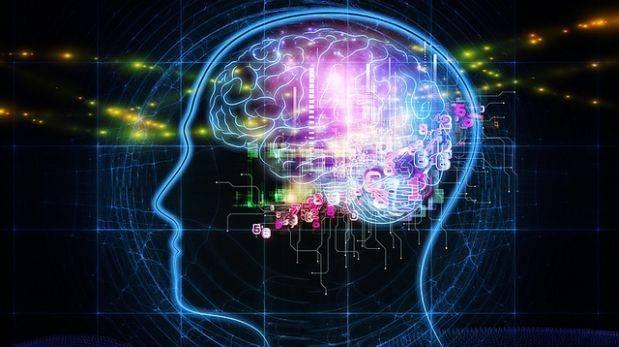 Vamos perdiendo ciertas conexiones en el cerebro