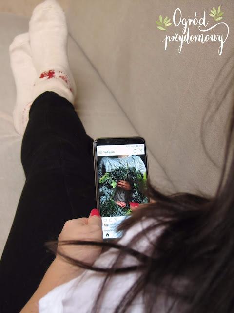 ogrodnicza konta, instagramowe profile, profil ogrodniczy, ogród przydomowy, instagramowe profile ogrodnicze, na Instagramie