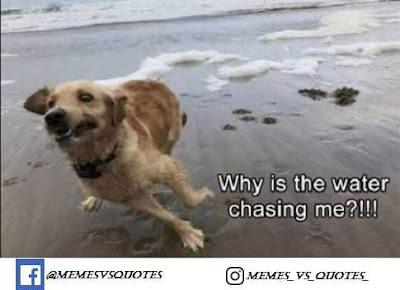 Water chasing me