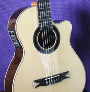 Ovation guitars activation code