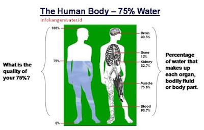 air dalam tubuh