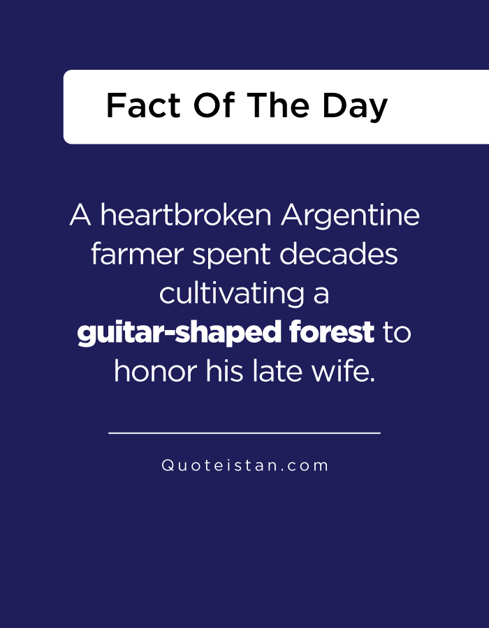 A heartbroken Argentine farmer spent decades cultivating a guitar-shaped forest to honor his late wife.