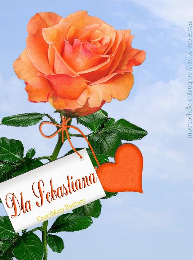 Cd Najpiękniejsze Róże Dla Każdego Zobacz I Weź Swoją