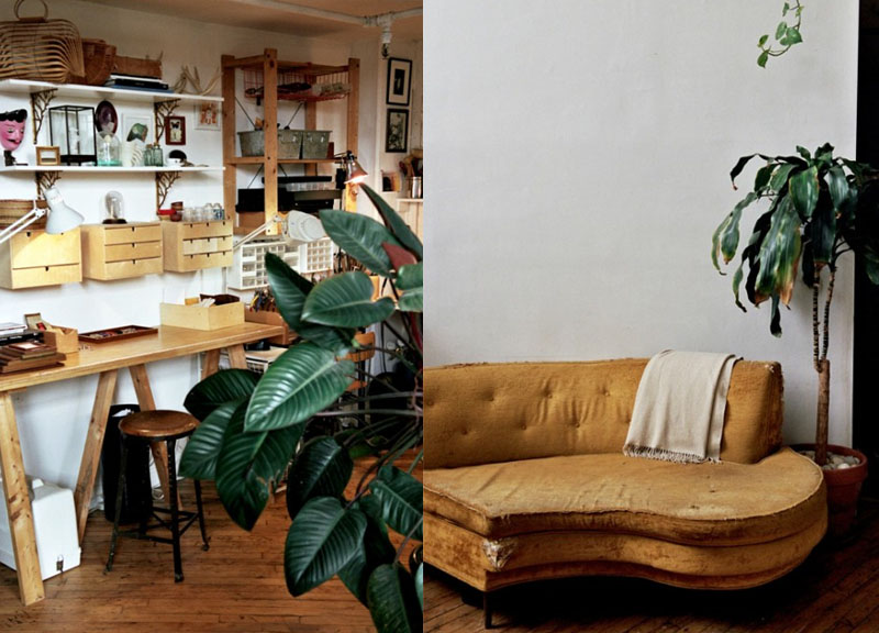 House Plants Good Advice This Brooklyn Couple Is More Than A Jewelry Designer And Photographer