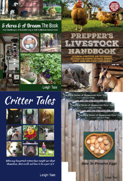 My homesteading books