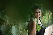 Vasavi Reddy glamorous photo shoot gallery-thumbnail-5