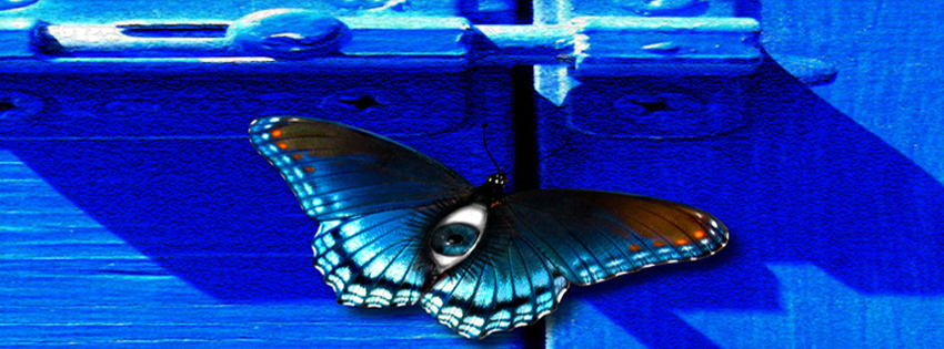 Fathers Day Wallpapers Quotes In Hindi Beautiful Butterfly Facebook Timeline Cover Hindi Sms