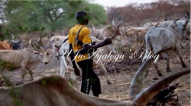 Disarm herdsmen now – Fulani chief tells Nigerian govt