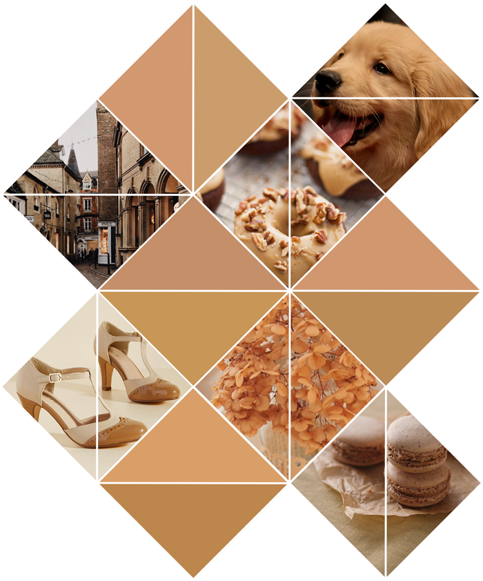 Pantone Fall Winter 2017-2018 Color Trend, Cambridge, butterrum, tan, camel, brown, champagne, puppy, macaron, modcloth shoes, hydrangeas, photography