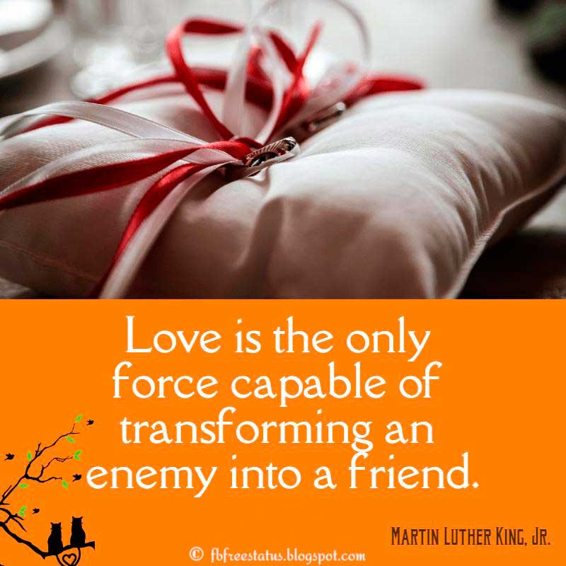 Martin Luther King, Jr. Love Quote, Love is the only force capable of transforming an enemy into a friend.