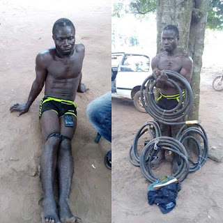 Photos: Notorious transformer cable thief nabbed in Ogun State