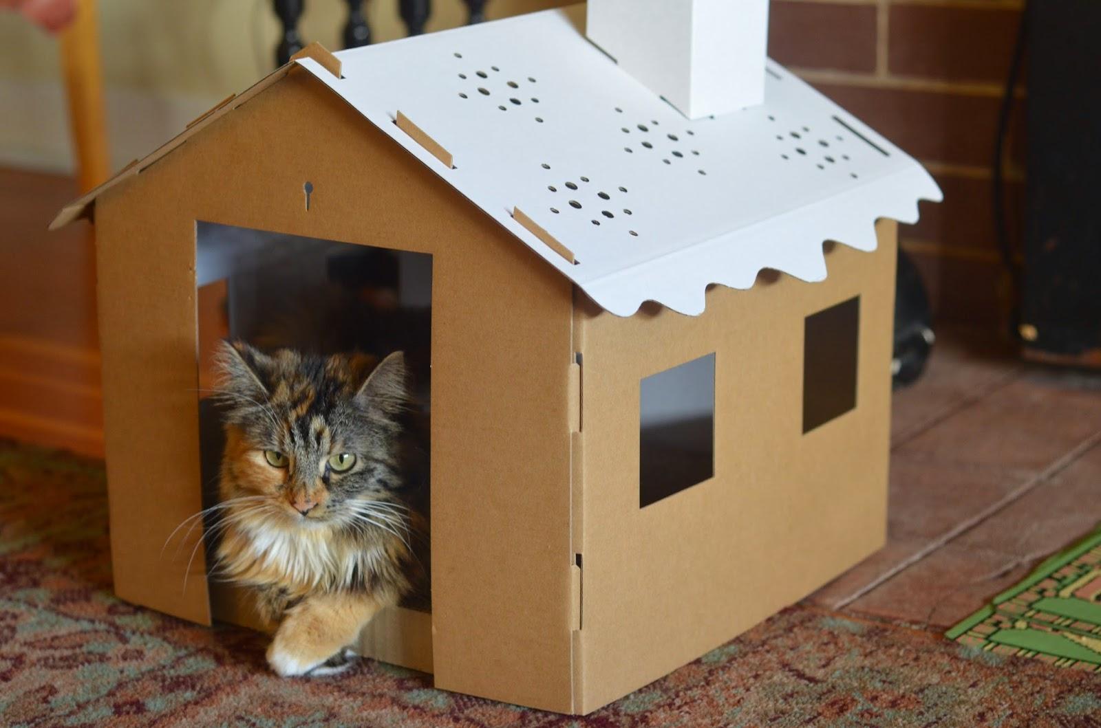 M s y m s manualidades casas de cart n para mascotas - Casas para gatos baratas ...