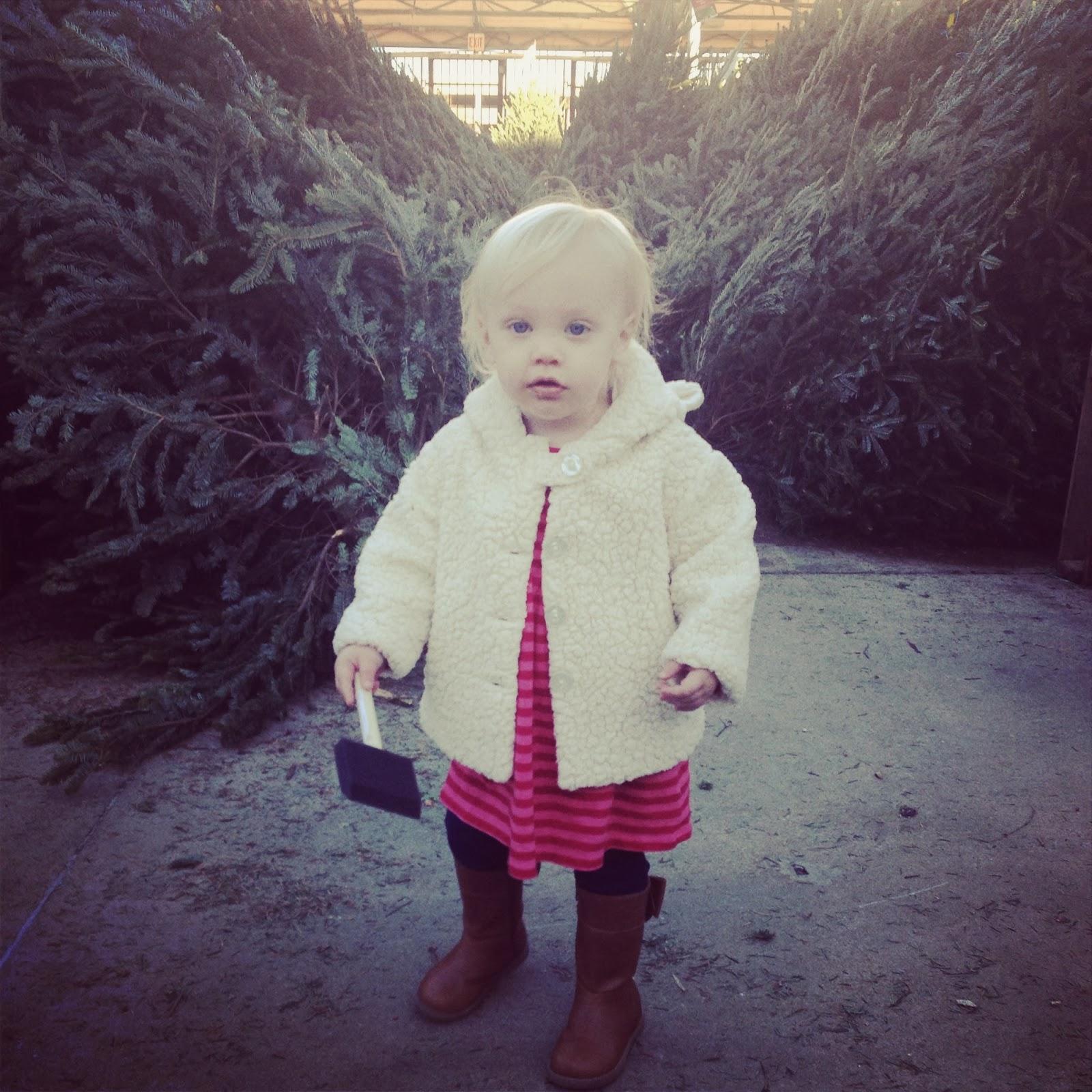 Home Depot Real Christmas Tree Prices: Lil' Bit Henson: Oh, Christmas Tree