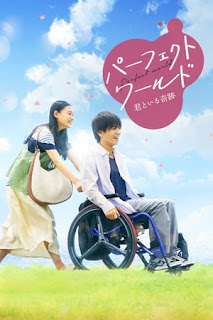 Download Perfect World (2018) Bluray 720p