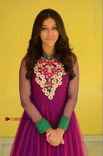 Actress Pooja Jhaveri Latest Stills in Purple Salwar Kameezt at Dwaraka Success Meet  0091.JPG