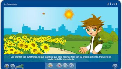 http://repositorio.educa.jccm.es/portal/odes/conocimiento_del_medio/las_plantas/contenido/cm07_oa03_es/index.html
