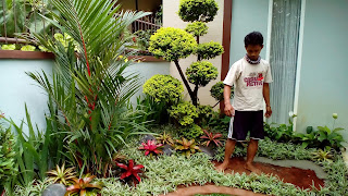 Tukang Taman Yasmin,Jasa Pembuatan Taman di Yasmin
