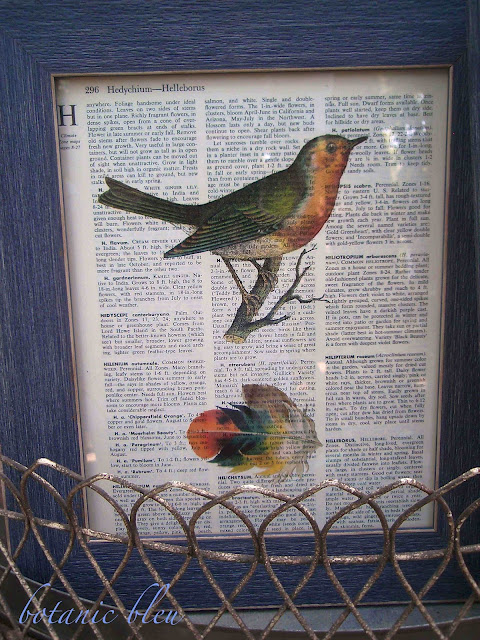 robin-and-feather-print-on-dictionary-page