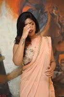 Eesha Rebba in beautiful peach saree at Darshakudu pre release ~  Exclusive Celebrities Galleries 010.JPG