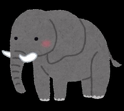 かわいい象のイラスト