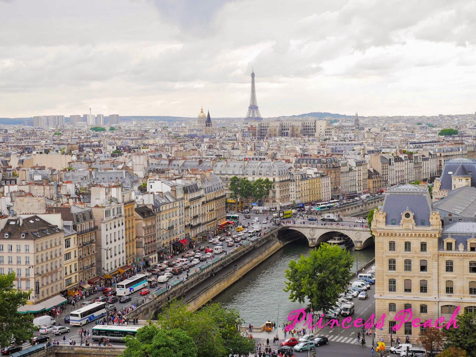 巴黎聖母院頂樓風景