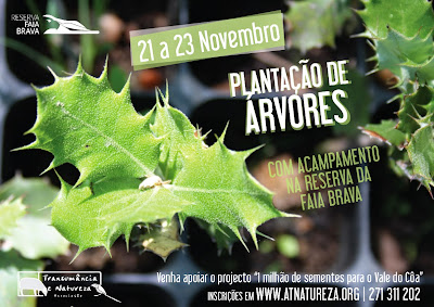 http://www.atnatureza.org/index.php/8-noticias/158-plantacao2014