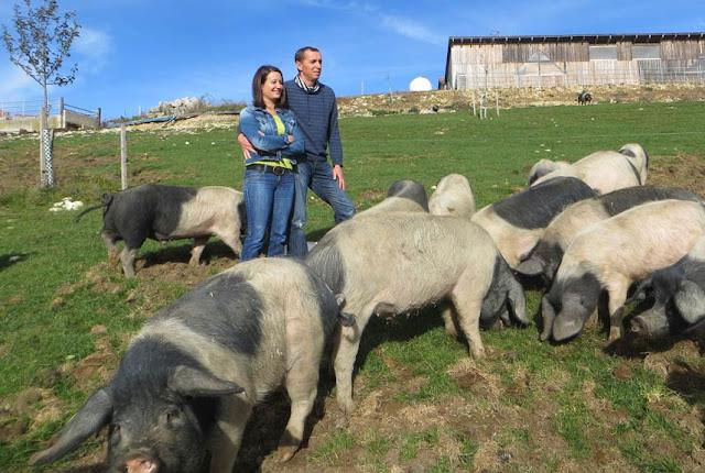 Umsteller aus Überzeugung: Joana und Joan Studer, Viehzüchter im jurassischen Lucelle