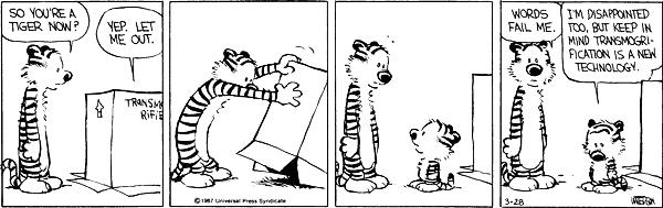 Tacky Tigers Calvin And Hobbes Two Tigers