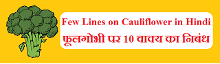 Few Lines on Cauliflower in Hindi