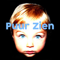 Logo Puur Zien life coach praktijk en stichting Breda - mindfulness fotografie workshops