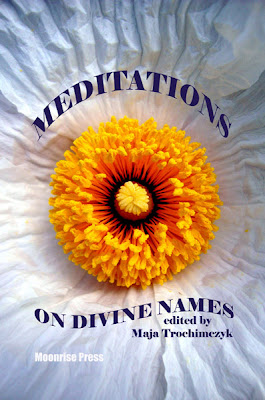 Cover of Meditations on Divine Names edited by Maja Trochimczyk, 2012