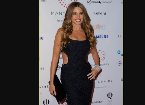 Sofia Vergara Esplendida En Hopes Charity Event