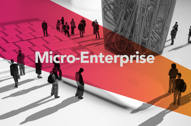 What Is Microenterprise? Microenterprise Definition