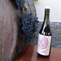 Vino Mastlaz di Montegelli