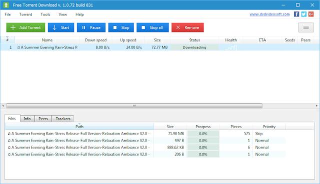 Software Download Manager Torrent Gratis