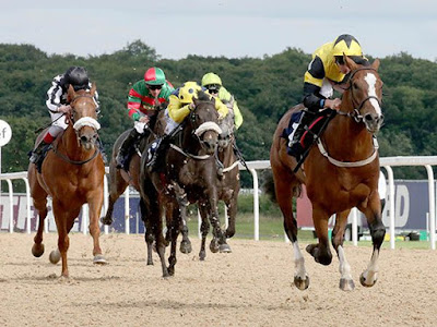 Free Horse Racing Tips