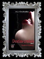 http://unpeudelecture.blogspot.com/2018/09/destins-croises-2-daj-orchidea.html