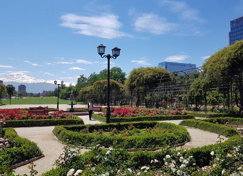 El Rosedal de Santiago, Parque Araucano