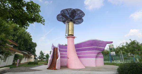 台中新社|星願紫風車|大型音樂盒|花迎光臨彩虹斗笠隧道|紫斑蝶休息站