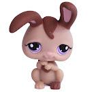 Littlest Pet Shop Special Rabbit (#1089) Pet