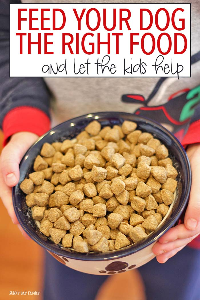 Do your kids love to share food with the dog? Mine did - but all that table food is not good for your pet. Learn what is good nutrition for your dog and how to let kids help feed them in a healthy and fun way!