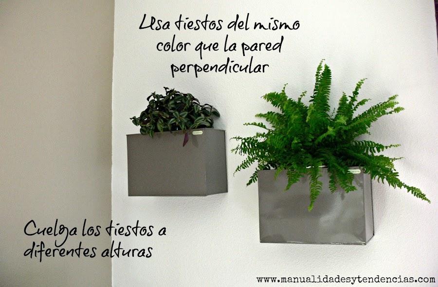 Consejos para decorar una pared vegetal